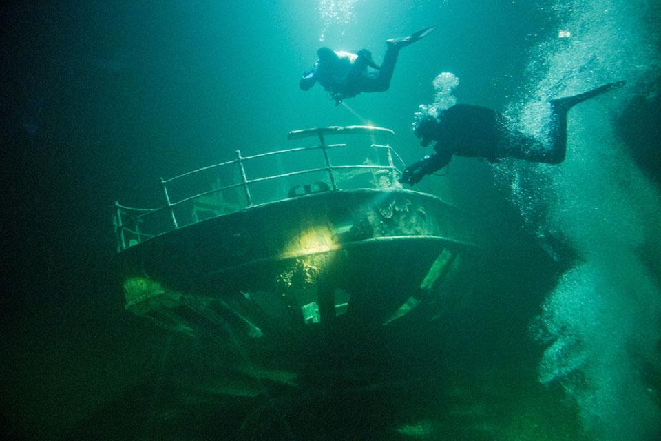 Neue Walmodelle und geflutetes Schiffswrack im OZEANEUM Stralsund